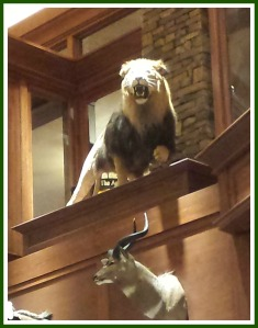 If you do not like mounted animals than I would not recommend a trip to Bass Pro. We found the lion especially impressive.