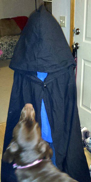I decided to pull out some old costumes. C-Dog was loving Mark's cloak but Sunny was a bit leery.